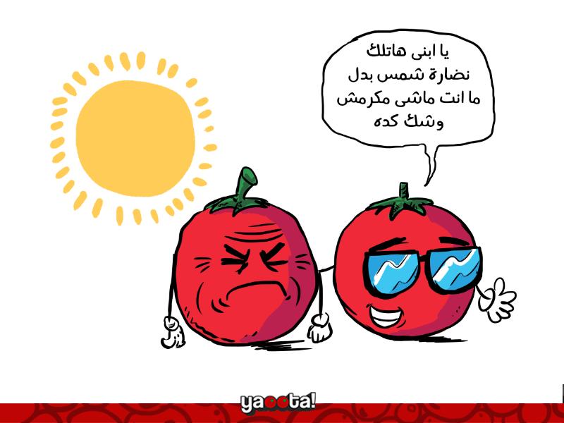 ازاي-تختار-نظارة-شمس