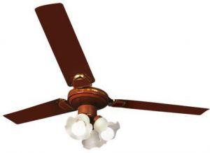 fresh ceiling fan 3 spots